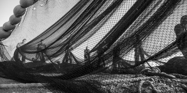 nets-prosafemarine